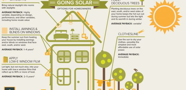 solar_options_for_homeowners_infographic