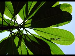 the_day_10