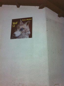 Wolf_Fenster-zum-Hof
