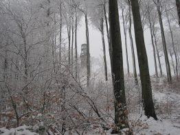 Der-Bilsteinturm