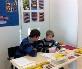 Vincent und Darius untersuchten Bananen