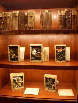 Holzbibliothek