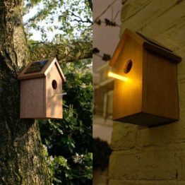 Attracting insects: the solar birdhouse