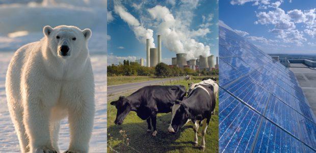 Energiewende- und Klimaschutzgesetz (c) WWF