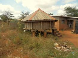 Das Dorf Nyumbani versorgt sich was Lebensmittel, Bildung und Gesundheitsversorgung angeht weitgehend selbst.