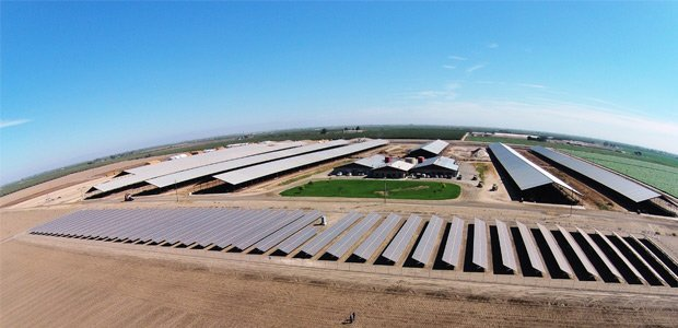 milkfarm_California_SMASolar