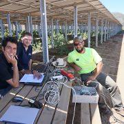 Project Engineer Hamed Sadri (from left), Development Engineer Tim Rösinger and Service Engineer Oscar Hernandez at the PV farm.