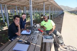 Projektingenieur Hamed Sadri (v.l.), Entwicklungsingenieur Tim Rösinger und Serviceingenieur Oscar Hernandez am Solarpark.