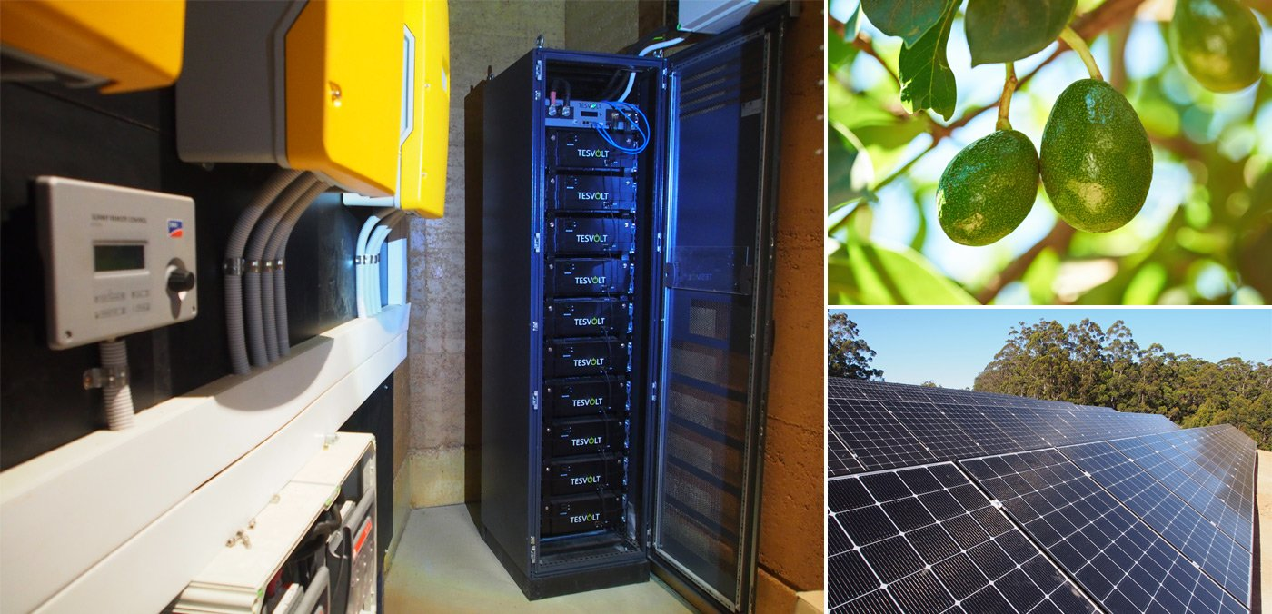 Off-Grid Avocados Powered by SMA and Tesvolt