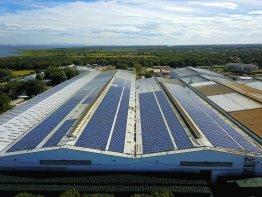 Solarpanels auf dem Dach der Brauerei.