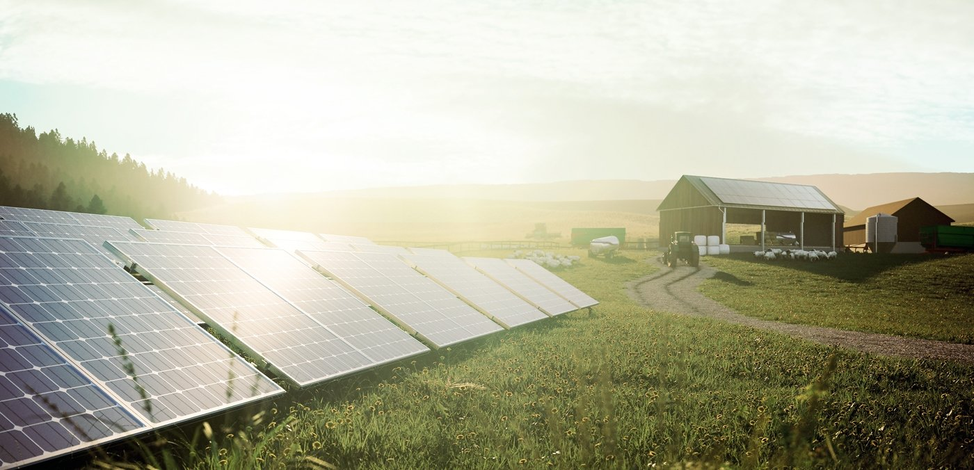 Energy Transition for Businesses: How Companies Benefit from Solar Power