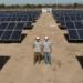 Establecimiento Agropecuario Mejora su Negocio con Energía Solar!